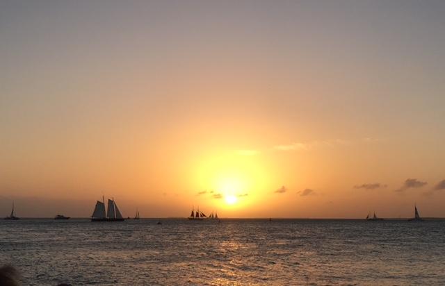 sunset.jpg.daa14d698af8b36acec5cc0e6b71ed25.jpg
